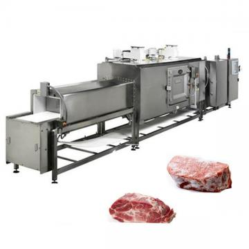 Commercial Frozen Meat Processing Unfreezing Thawing Machine