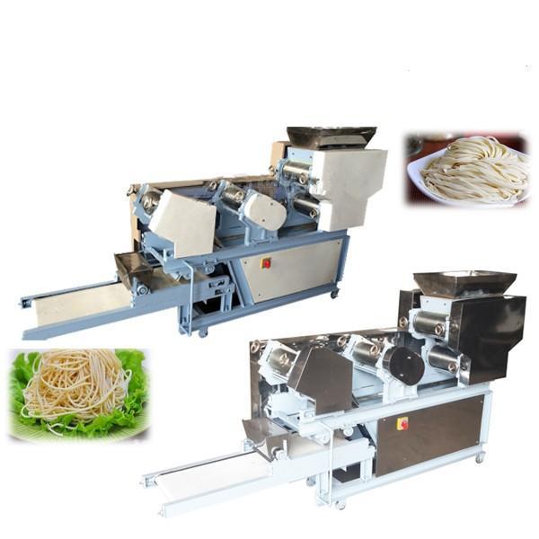 Direct manufacturers good quality vegetable noodle maker #2 image
