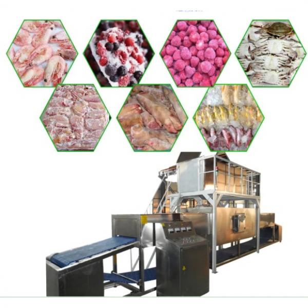 Energy Saving and Durable Microwave Thrawing Machine for Fish/Seafood for Sale with Ce